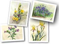 floralCards